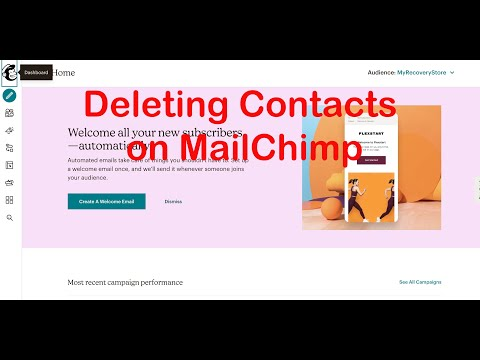 Deleting Contacts on Mailchimp [Video]